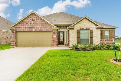 Katy Single Family Home For Sale: 23323 Oriole Sky