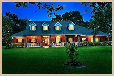Magnolia Single Family Home For Sale: 32210 Mink Creek Court