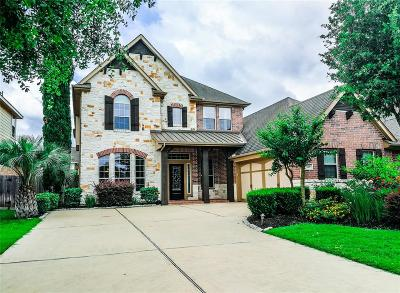 Sugar Land Single Family Home For Sale: 619 Doscher Lane