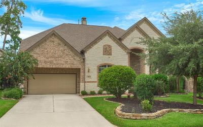 The Woodlands Single Family Home For Sale: 19 Chipped Sparrow Place