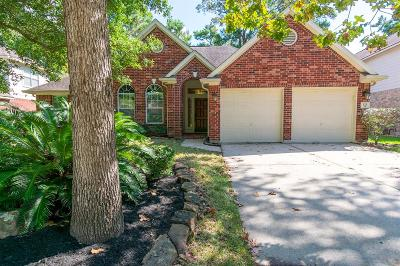 The Woodlands Single Family Home For Sale: 111 W Hobbit Glen Drive