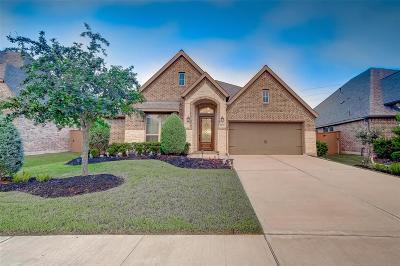Richmond Single Family Home For Sale: 11234 Dunstan Hill Drive