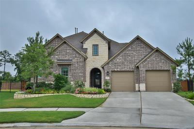 Spring Single Family Home For Sale: 4147 Hemingway Pass Lane