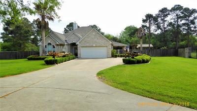 Tomball Single Family Home For Sale: 26014 Le Berge Drive