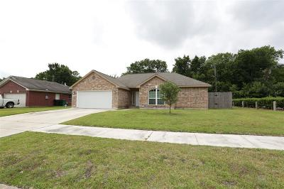 Houston Single Family Home For Sale: 3908 Kilkenny Drive