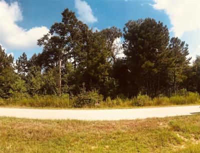Residential Lots & Land For Sale: 451 R 3415