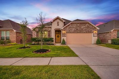 Tomball Single Family Home For Sale: 24614 Emerald Pool Falls Drive
