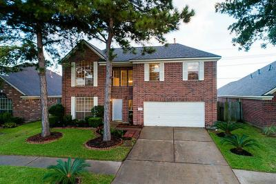 Katy Single Family Home For Sale: 20307 Wild Berry Drive