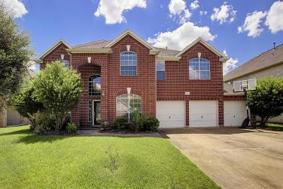Houston Single Family Home For Sale: 10042 Rhiney Court