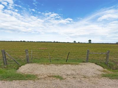 Fort Bend County Farm & Ranch For Sale: 00000 W Tavener