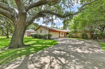 Houston Single Family Home For Sale: 14314 Wickersham Lane