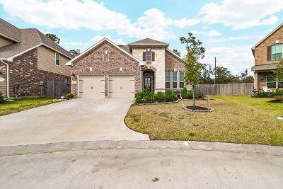 Tomball Single Family Home For Sale: 8722 Kendahlwood Ln Court