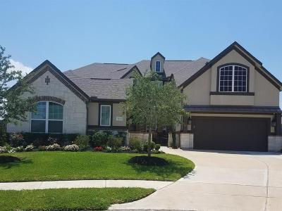 Pearland Single Family Home For Sale: 3413 Misty Gap Court