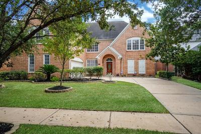 Sugar Land Single Family Home For Sale: 127 S Hall Drive
