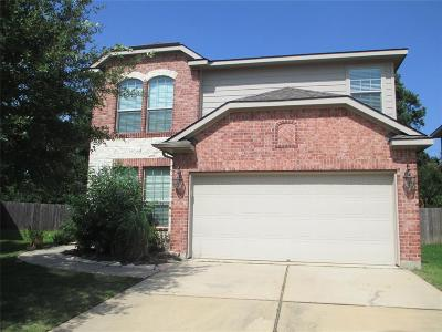 Tomball Single Family Home For Sale: 20326 Pine Water Lane