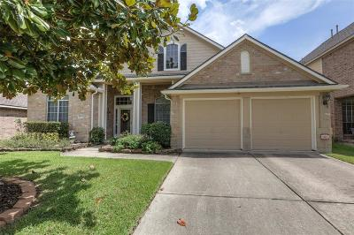 Tomball Single Family Home For Sale: 11719 Gray Forest Trail