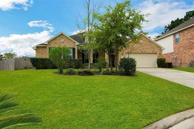 The Woodlands Single Family Home For Sale: 131 Prairie Dawn Cir