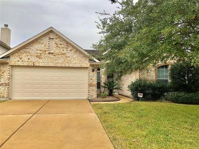 Houston Single Family Home For Sale: 12603 Canyon Echo Drive