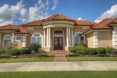 Single Family Home For Sale: 133 Mia Lago Drive