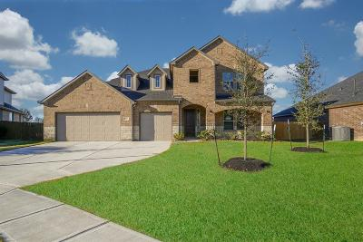 Katy Single Family Home For Sale: 27906 Pinpoint Crossing Drive