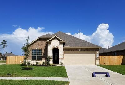 Conroe Single Family Home For Sale: 14301 Congaree Court