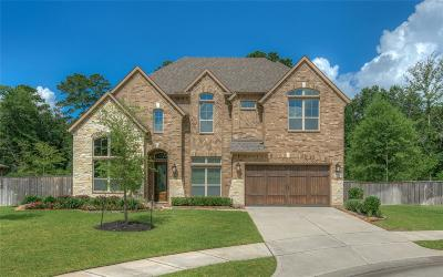 Spring Single Family Home For Sale: 5203 Creekland Circle