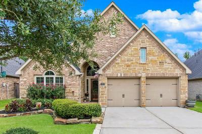 Montgomery TX Single Family Home For Sale: $312,500