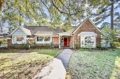 Houston Single Family Home For Sale: 12215 Rip Van Winkle Drive