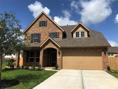 Dickinson Single Family Home For Sale: 4326 Parkview Terrace Lane