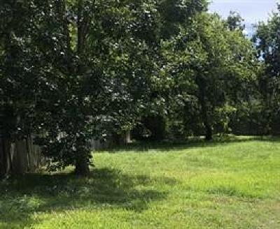 Houston Residential Lots & Land For Sale: 816 E 39th Street