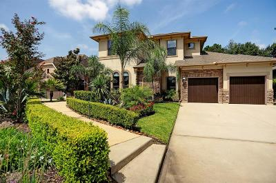 Single Family Home For Sale: 212 Silverwood Ranch Drive