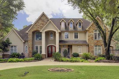 Houston Single Family Home For Sale: 9021 Wickford Drive