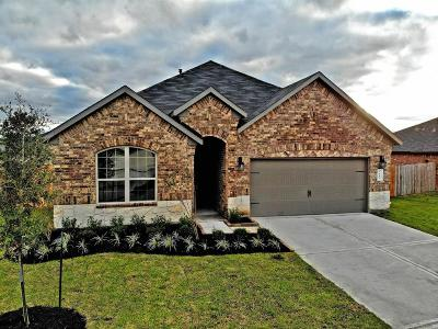 Rosenberg Single Family Home For Sale: 9106 Downing Street