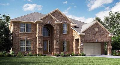 Katy Single Family Home For Sale: 1803 Bridge Gate Lane