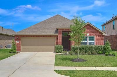 Magnolia Single Family Home For Sale: 10059 Cimarron Canyon Lane