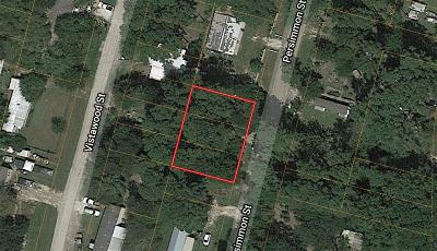 Willis Residential Lots & Land For Sale: 11579 Persimmon Street