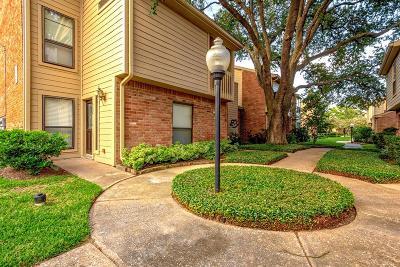 Houston Condo/Townhouse For Sale: 936 Memorial Village Drive #41