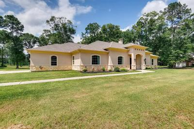 Montgomery County Single Family Home For Sale: 19427 Mersey Drive
