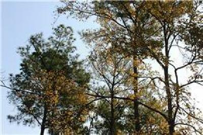 Conroe Residential Lots & Land For Sale: Lot 5 Broadway Avenue