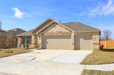 Manvel Single Family Home For Sale: 27 Alyssa Palms Drive