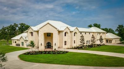 Montgomery Single Family Home For Sale: 3087 N Fm 1486 Road
