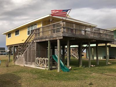 Surfside Beach Single Family Home For Sale: 1647 Sandpebble Place