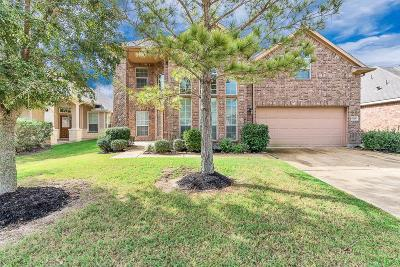 Katy Single Family Home For Sale: 6206 Hidden Alley Drive