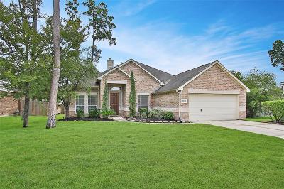 Spring Single Family Home For Sale: 25302 W Oak Villa Drive