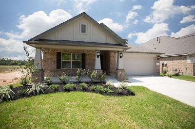 Conroe Single Family Home For Sale: 1612 Breezewood Drive