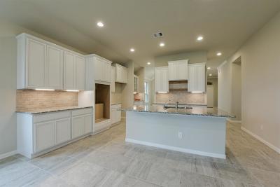 Katy Single Family Home For Sale: 3738 Brampton Island