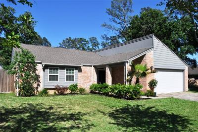Tomball Single Family Home For Sale: 22810 Wild Moss Street