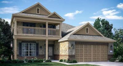 Houston Single Family Home For Sale: 19503 Shelby Ridge Lane