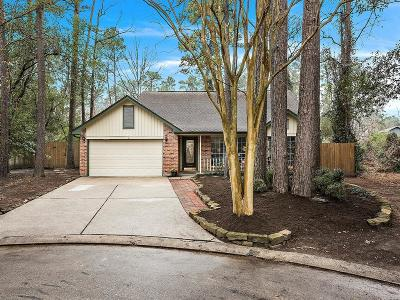 The Woodlands Single Family Home For Sale: 29 N Summer Star Court
