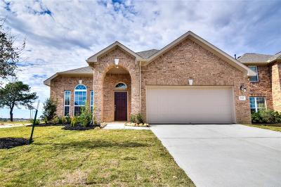 Katy Single Family Home For Sale: 2547 Pines Pointe Drive